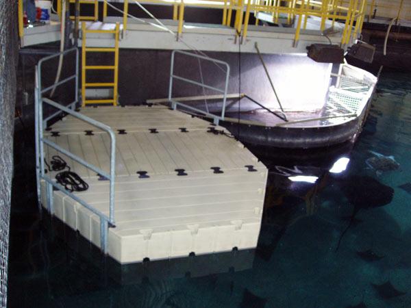 Aquarium Installation of EZ Docks